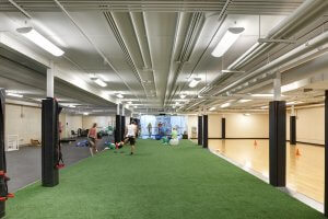 A gym room with artificial grass turf.